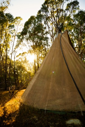 tipi in morning